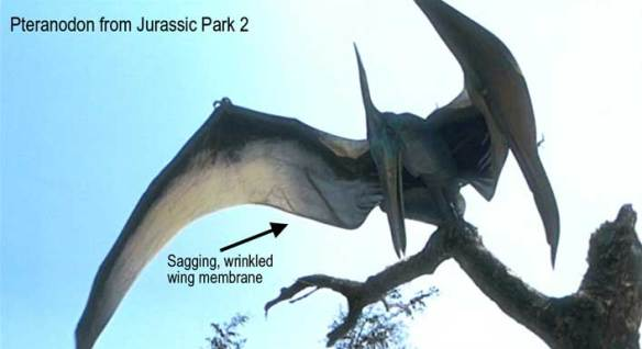 Saggy blanket Pteranodon wing membrane from Jurassic Park 2