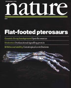 Dimorphodon weintraubi made the cover of Nature