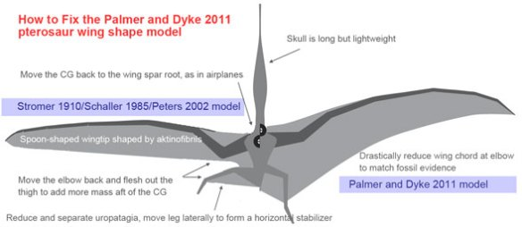 How to fix the Palmer and Dyke (2011) pterosaur wing
