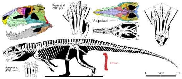 Postosuchus.