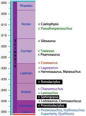 The Triassic and associated taxa and ichnotaxa