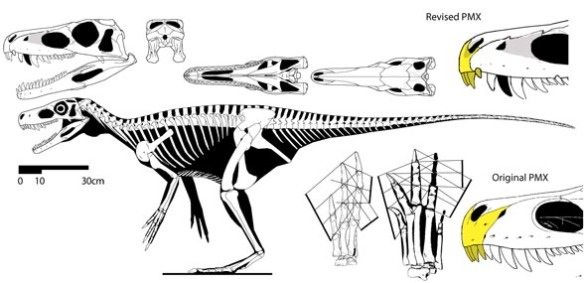A new nose for Herrerasaurus