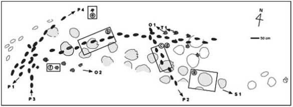 The pterosaur tracks (in black) crossing sauropod dinosaur tracks (in gray).