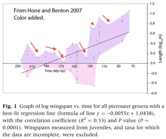 Copes Rule in Pterosaurs as plotted by Hone and Benton 2007