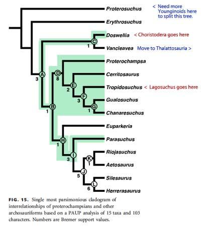 Proterochampsia tree