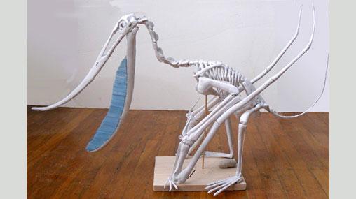 Pterodaustro by David Peters