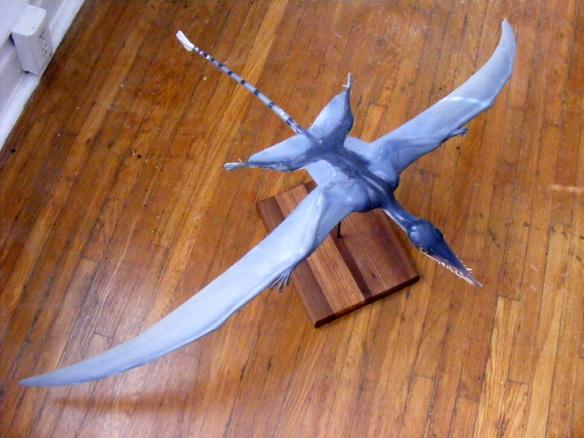 Rhamphorhynchus model by David Peters