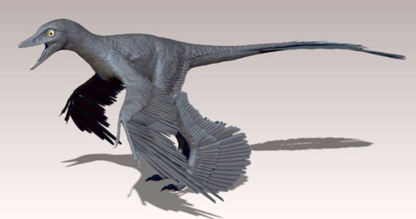Microraptor standing