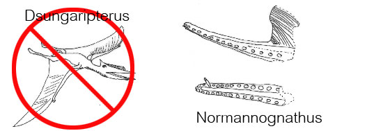 Normannognathus compared to Dsungaripterus. Artist unknown.