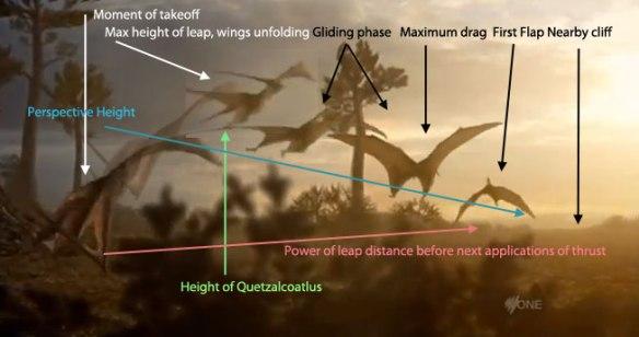 Quetzalcoatlus quadrupedal takeoff