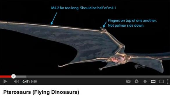 Quetzalcoatlus wing