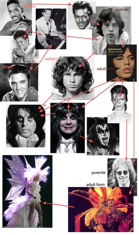 Evolution of rock stars beginning with Ike Turner (1951, Rocket 88) and Big Mama Thornton (1952, Hound Dog) and the rest you probably know. From sweet and clean cut rockstars evolved to become androgynous and highly decorated. Not shown: Liberace, who evolved plumage by convergence.