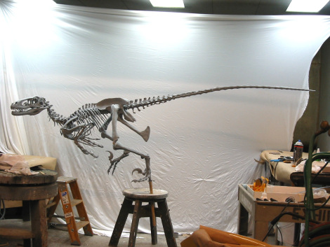 Lateral view of Deinonychus by Jason Brougham.