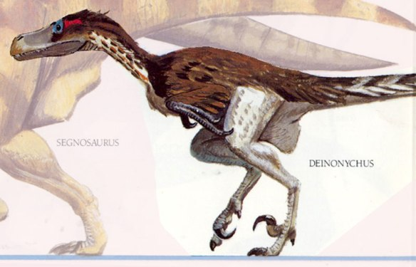 Figure 2. Feathered Deinonychus from A Gallery of Dinosaurs by David Peters.