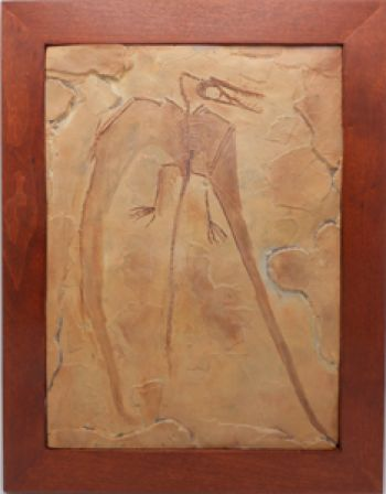 Figure 2. Another Rhamphorhynchus forgery. This one appears to be largely artwork.