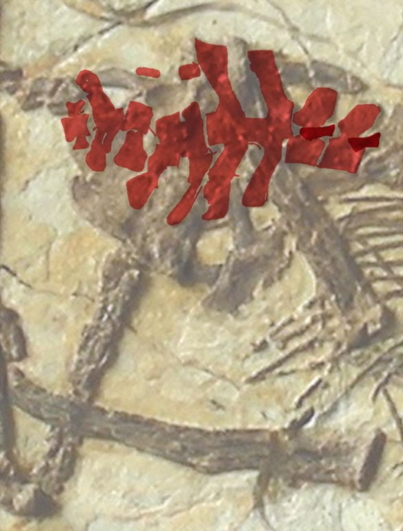 Figure 2. Darwinopterus robustodens sacral vertebrae in red.