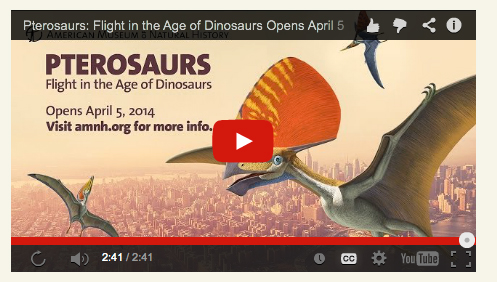 Figure 1. Click to play. AMNH pterosaur exhibit video featuring Mark Norell, Alex Kellner and Mike Habib.
