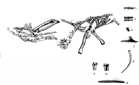 Figure 2. Like Michelangelo removing the excess marble, I removed every trace of Compsognathus, leaving nothing but Bavarisaurus in step 1.