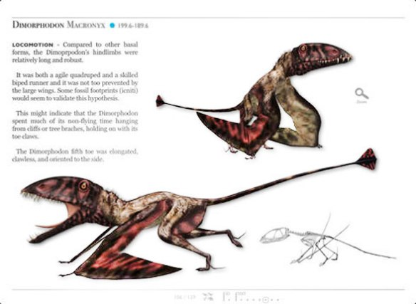 "Figure 1. ITunes SM Dinosaurs Dimorphodon. In a word: ""awkward."" Credit does go to the narrow chord wing membrane."