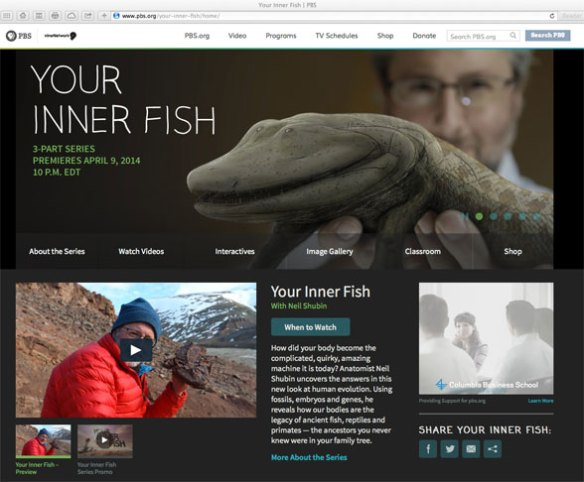 Figure 1. Click to go to the website. Your Inner Fish is Neil Shubin's 3-part series based on his book of the same name. This the best presentation on human evolution I have seen on TV.