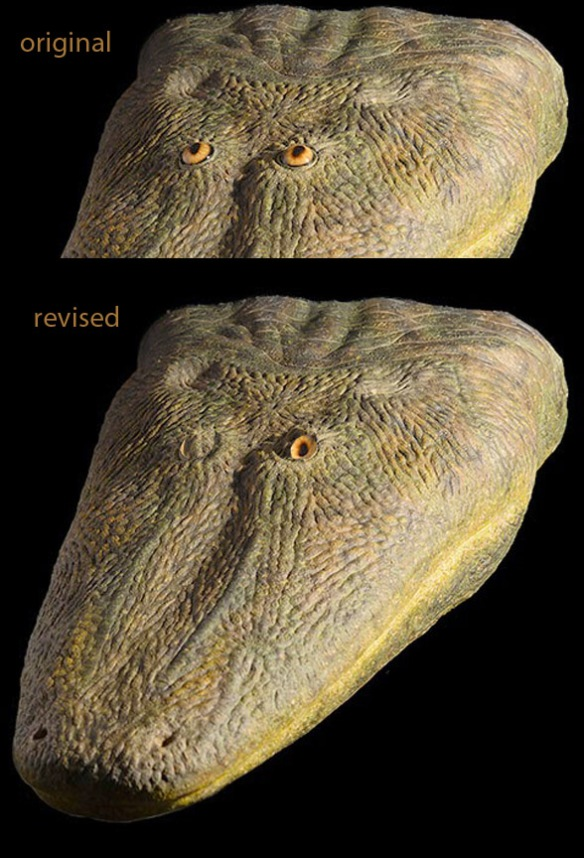Figure 1. Antarctosuchus polygon life restoration with original eyeballs, above, and suggested revision, below. Why way did the eyeballs point? It might make more sense to have 360 degree vision than binocular vision. Just like a frog.
