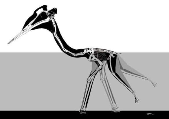 Figure 1. The azhdarchid pterosaur Quetzalcoatlus floating and poling producing manus only tracks.