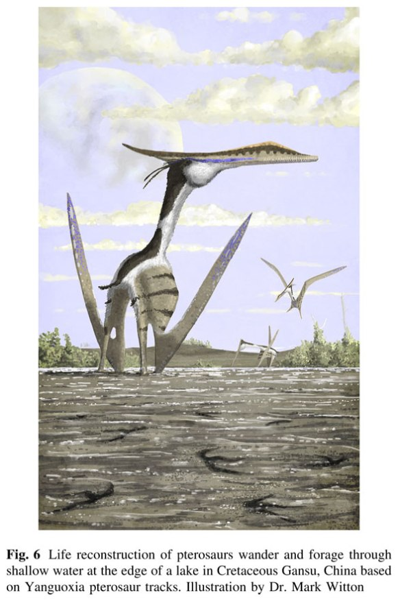 Figure 6. Illustration by Mark Witton showing how pterosaurs could walk on mudflats without leaving pedal imprints. If you understand the logic behind this image, please write to me.