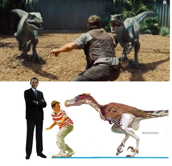 Figure 4. Here they got the scale right, but not the scales. Jurassic Park 4 scaly velociraptors (presumeably Deinonychus, above) and below feathered Deinonychyus (below) from A Gallery of Dinosaurs by David Peters, from 1989.  JP4 is at least 24 years behind in its depiction because I saw feathered 'raptors' in various books a few years before that.