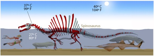 Figure 1. Aquatic Spinosaurus to scale with contemporary Early Cretaceous giant fish.