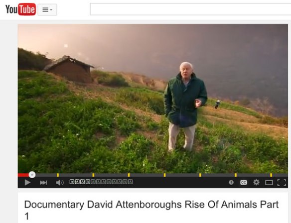 """Figure 1. Frame from David Attenborough's """"Rise of the Animals part 1 and part 2 on YouTube. Click to view part 1."""
