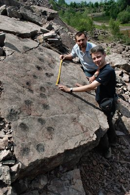 Figure 1. The Middle Devonian tetrapod tracks from 395 mya are 35 million years older than Ichthyostega, which could not walk like this on land.