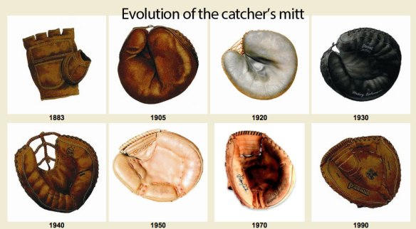 Figure 7. Everything evolves, even catcher's mitts. By analogy, bat's wings evolved to become better catcher's mitts.