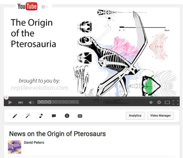 "Click to view this ""Origin of Pterosaurs"" video on YouTube."