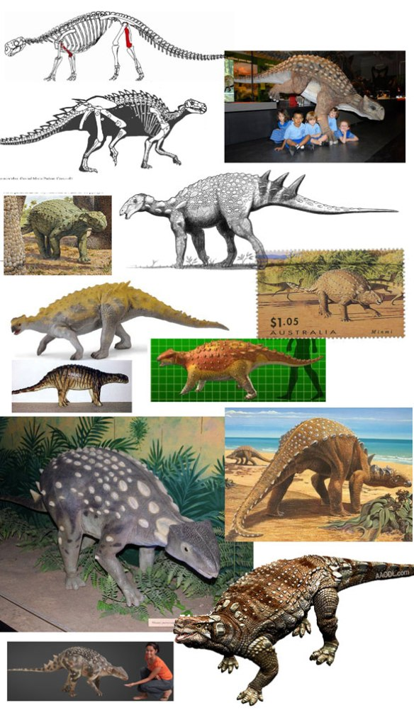 Figure 1. The many ways the Australian ankylosaur, Minmi, has been portrayed. Each one is different.