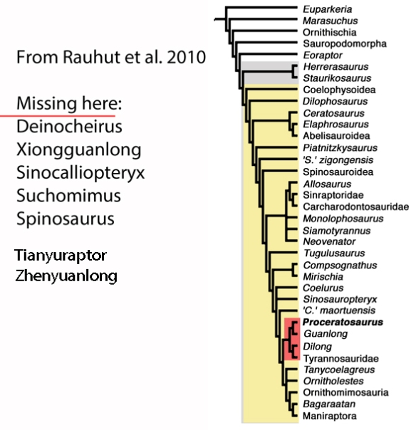Figure 3. Theropods from Rauhut et al. 2010. Here Proceratosaurus, Dilong and Guanlong nest with tyrannosaurs.
