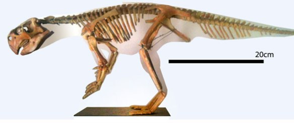Figure 1. Psittacosaurus wood and wire model by yours truly, several years back.