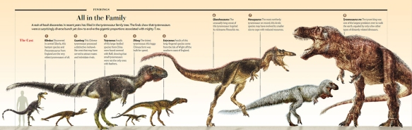 Figure 2. Tyrannosaur ancestors according to Brusatte, artwork by Todd Marshall. Those on the left are actually closer to allosaurs and spinosaurs. Drag to desktop to enlarge.