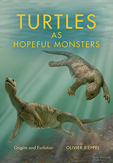 Figure 1. Turtles as Hopeful Monsters by O. Rieppel 2017.