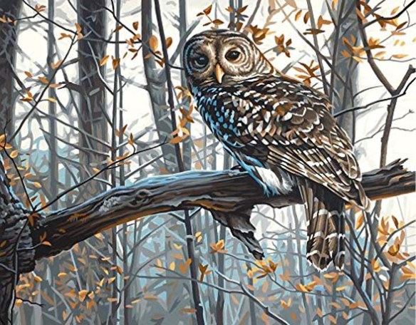 Figure 1. owl paint-by-numbers