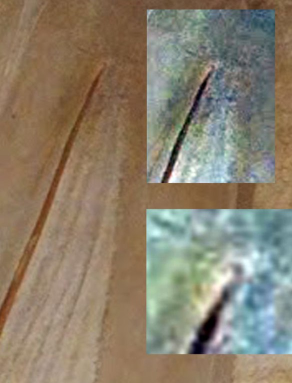 Figure 2. Zittel wing m4.5, wingtip ungual in situ, plus with the color spectrum (image levels in Photoshop) expanded.
