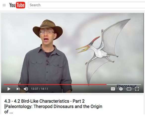 Click to view. YouTube video on birds and pterosaurs from Dr. Phil Currie