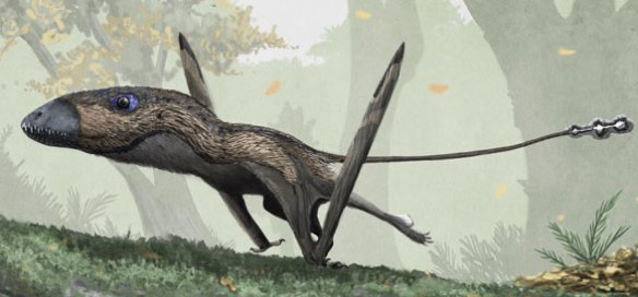 Figure 4. Galloping Dimorphodon by Mark Witton.