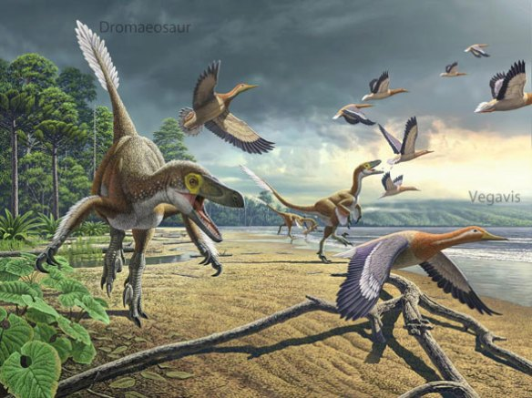 Figure 3. Vegavis being chased by a dromaeosaur in the Latest Cretaceous of Antarctica. Dr. Julia Clarke considered Vegavis an early duck. The LRT nests it with tinamou-like birds.