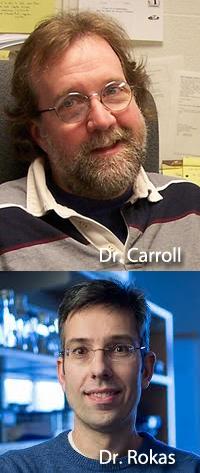 Figure 2. Dr. Sean Carroll and Dr. Antonis Rokas