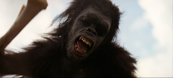 Figure 3. Scene from 2001: A Space Odyssey by director Stanley Kubrick. Not violence, but cooperation marked the genesis of humankind. Chimps are all about violence.