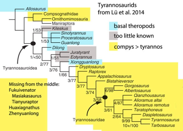 Figure 1. Qianzhousaurus cladogram from Lü et al. Colors added based on the LRT.