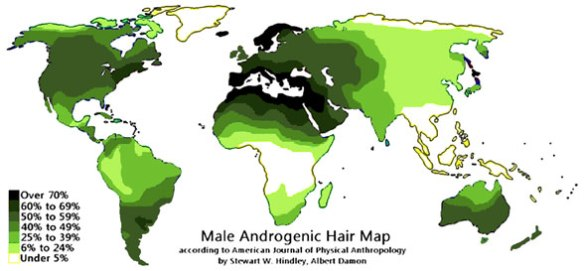 Figure 1. Percent of body hair on males worldwide appease here in darker tones. Both equatorial and polar humans have less hair. Mediterranean and Scandinavian men have more hair covering their bodies.