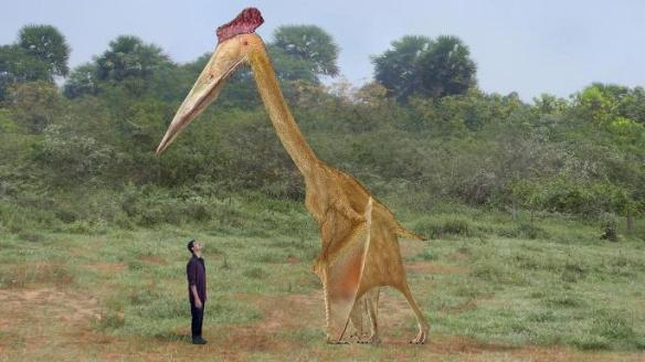 FIgure 2. From The Sunday Times (UK) showing a human to scale with a restoration of Hatzegopteryx.